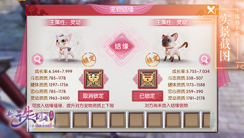 图片: 图4+宠物结缘玩法.jpg